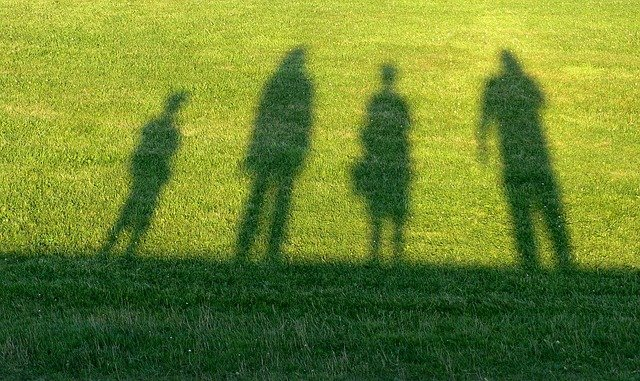 Shadow of an adopted family on grass