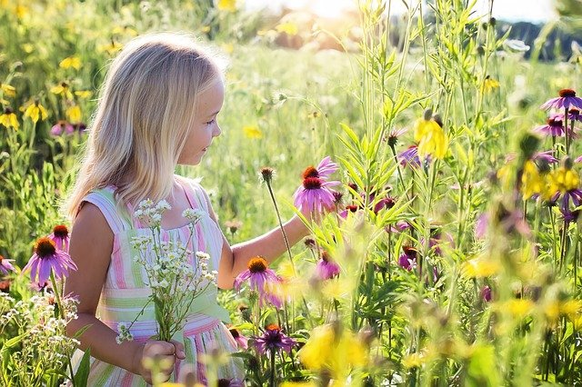 girl with long hair in field of flowers